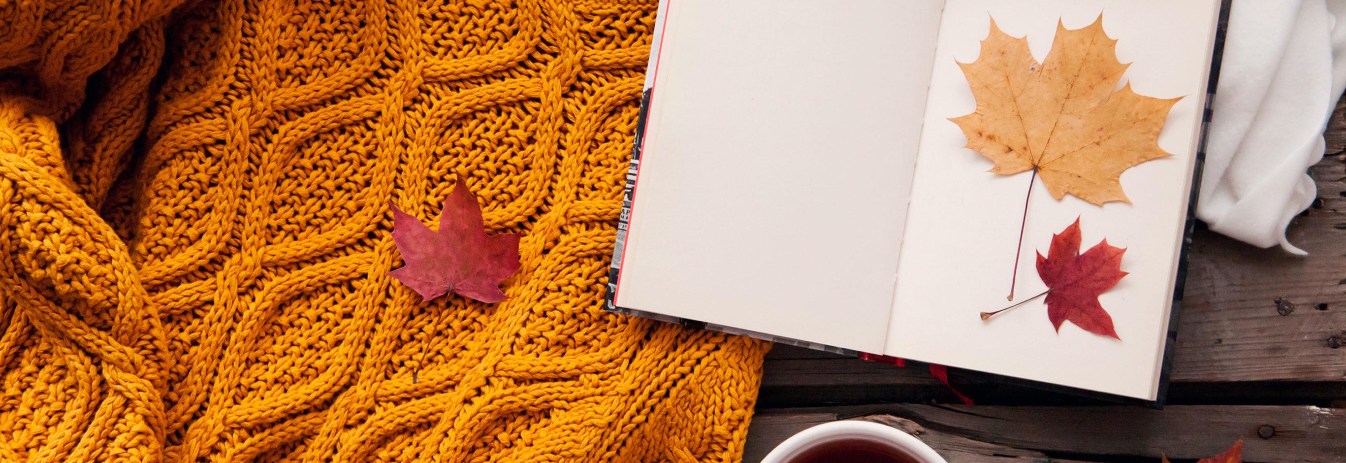 Осень теплый свитер картинки
