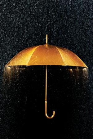 The Rain Man: A Book of Poems