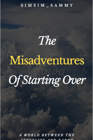 The Misadventures of Starting Over