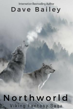 NorthWorld: A Viking Fantasy Saga