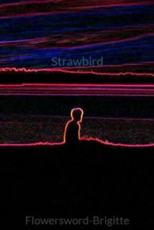 Strawbird
