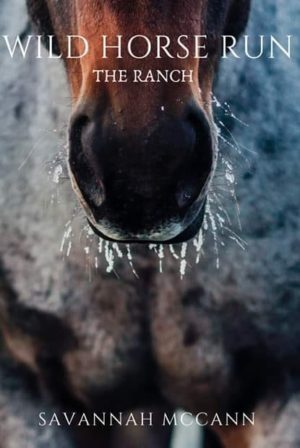 Wild Horse Run Series - Book One - The Ranch